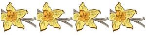 vani fiore 4